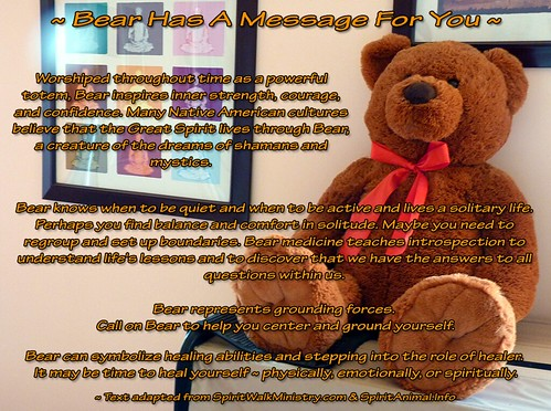 ~ Bear Has A Message For You ~