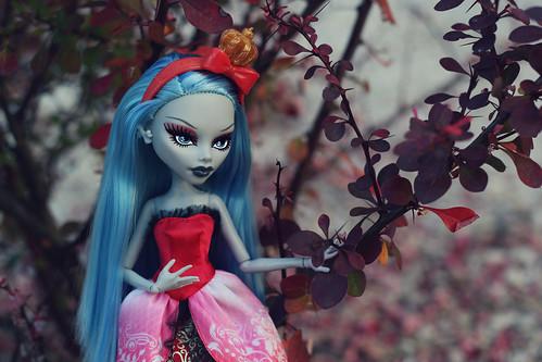 Фото наших Monster High - Страница 20 14624411860_8fbb0e4ff2