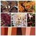 Brown/Neutral Autumn — Leanne and David Kesler, Floral Design Institute, Inc., in Portland, Ore.