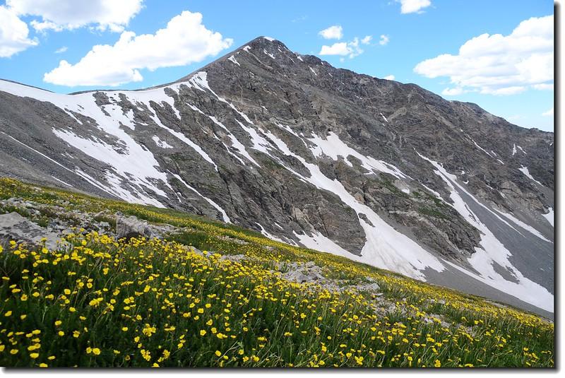 Torreys Peak from Grays' slope 8