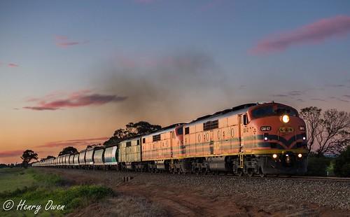 sunset clyde lowlight diesel bulldog sa southaustralia streamliner direk emd graintrain gwa bullnose 4132 mallala gmclass gm42 gm43 viterra gm40 geneseewyomingaustralia viterragrain 4132s triplegmlocomotives