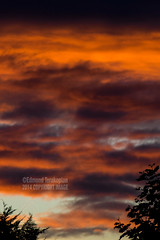 Red Sky Sunset 20140728-079.jpg