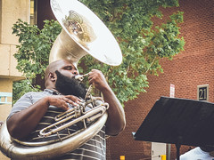 sousaphone, musical instrument, brass instrument,