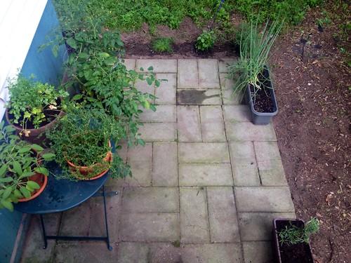 Fledgling garden