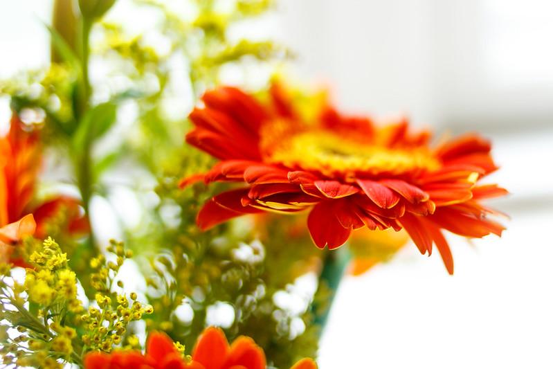 Soul 31/31 - Exercise 36: Fresh Flowers