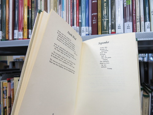 Poetry in the Aotearoa New Zealand Centre