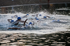 water, open water swimming, swimming, sports, recreation, outdoor recreation, water sport,