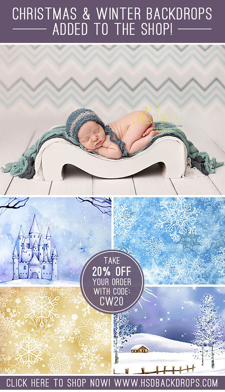 Christmas Photography Backdrops |  Winter Photography Backdrops