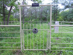 outdoor structure(0.0), chain-link fencing(0.0), zoo(0.0), split rail fence(0.0), home fencing(1.0), fence(1.0), gate(1.0),