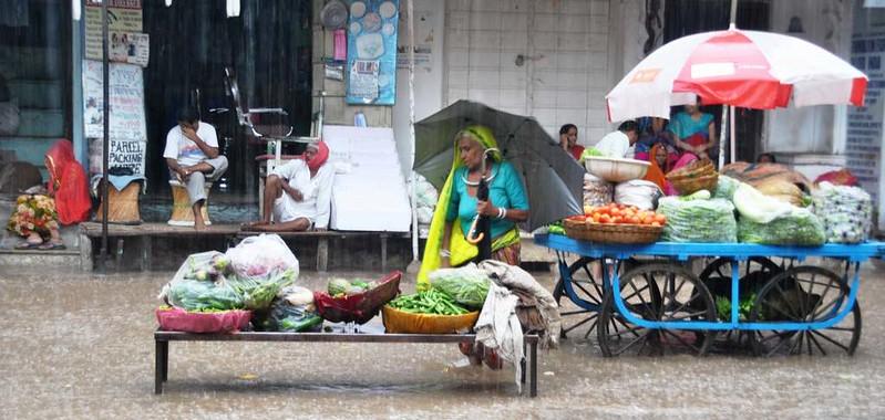 485 Ultimos dias en Pushkar  (11)