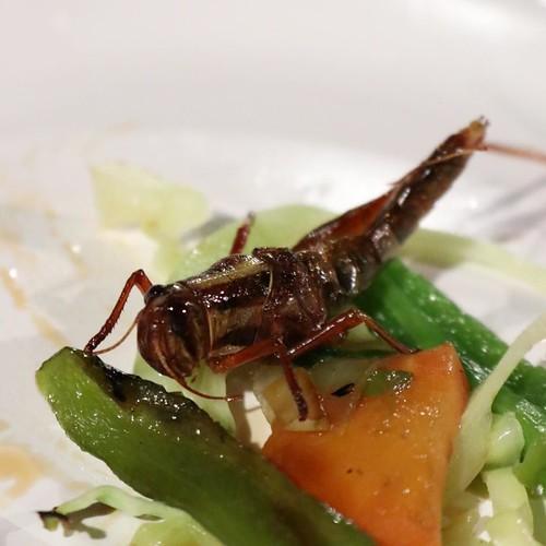 普通の野菜炒めでは、なかなか見ることができない食材。