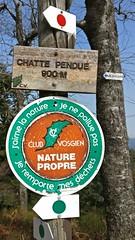 170312 Balade Chatte pendue