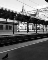 #gdansk #trainstation #poland #blackandwhite