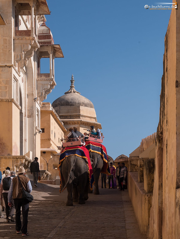 The elefants of Amber Fort