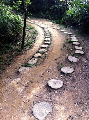 新店區柴埕路步道。(圖片來源:台灣千里步道協會)