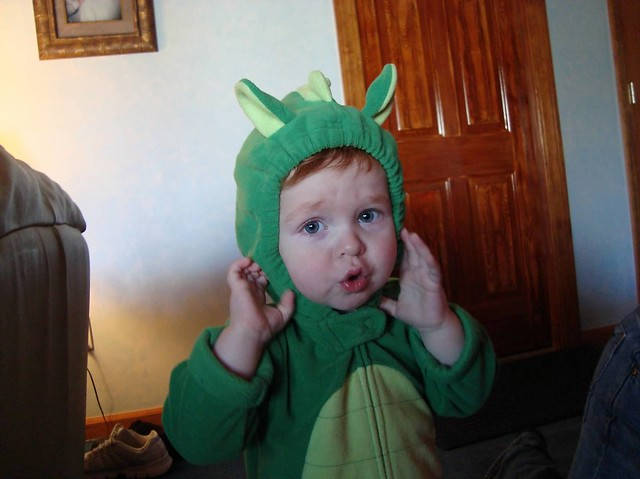 Dragon Connor 18 months