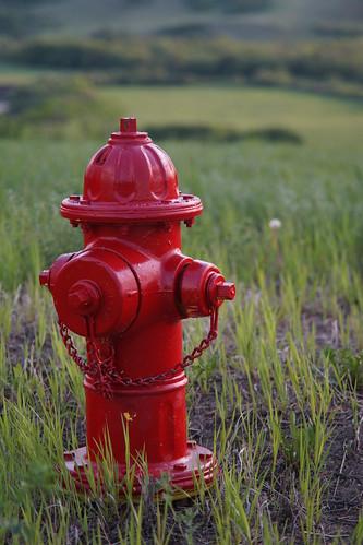 hydrant fire minolta sony saskatchewan 28135 a99