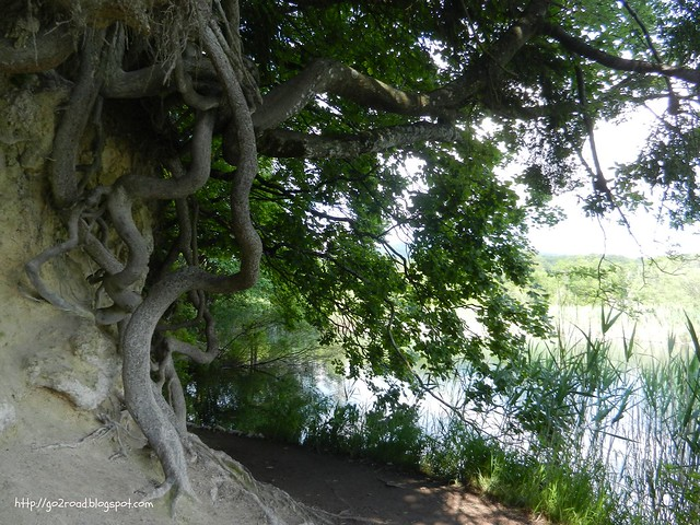 Природа Плитвицких озер