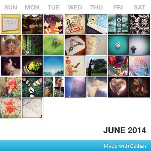 June done! #fmsphotoaday