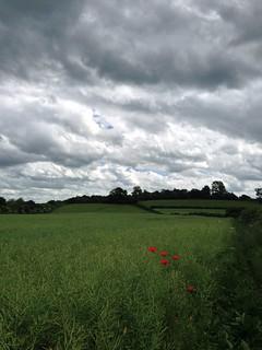 View up to Hanborough