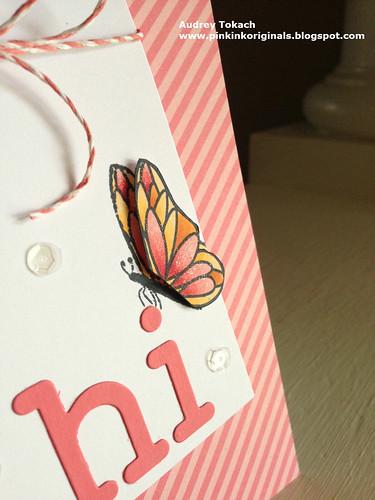 Butterfly Hi