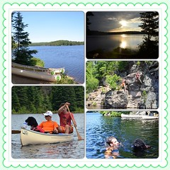 Thanks to all the #people I love who made our #trip to one of the #greatest #places on earth #amazing ! #algonquin #lake #tomtompson #ontario #north #park #canoe #portage #standardpoodle #swim #jump #camp #toobeautifultodescribe