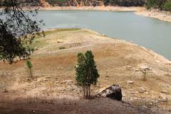 Dam - Embalse Buseo