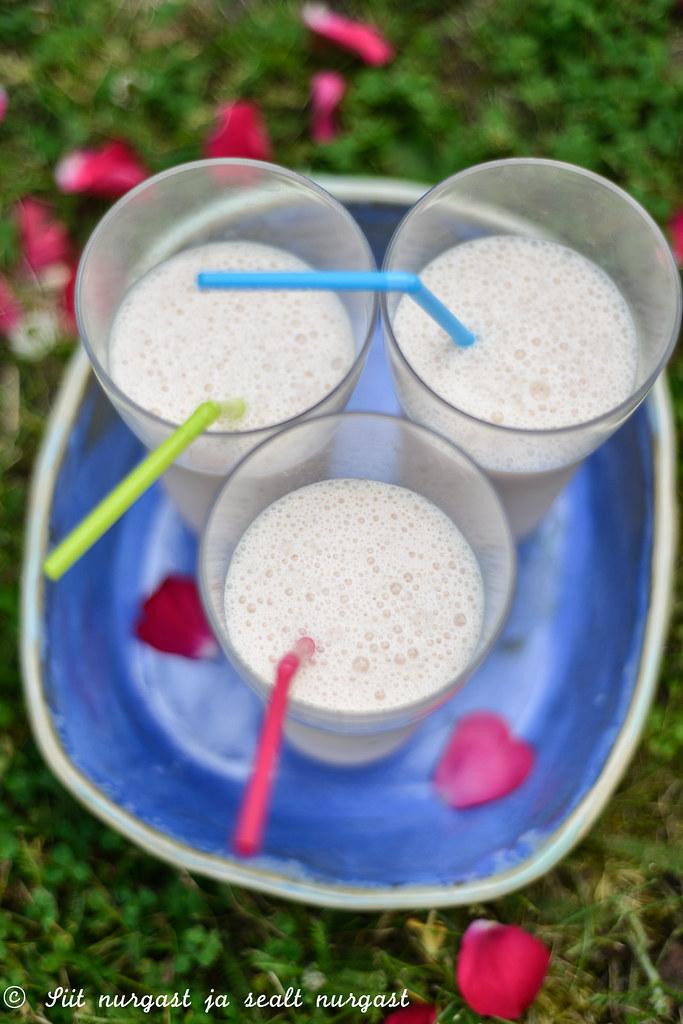 jäätisekokteil ploomimahlaga