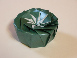 16-sided semi-regular tato-box