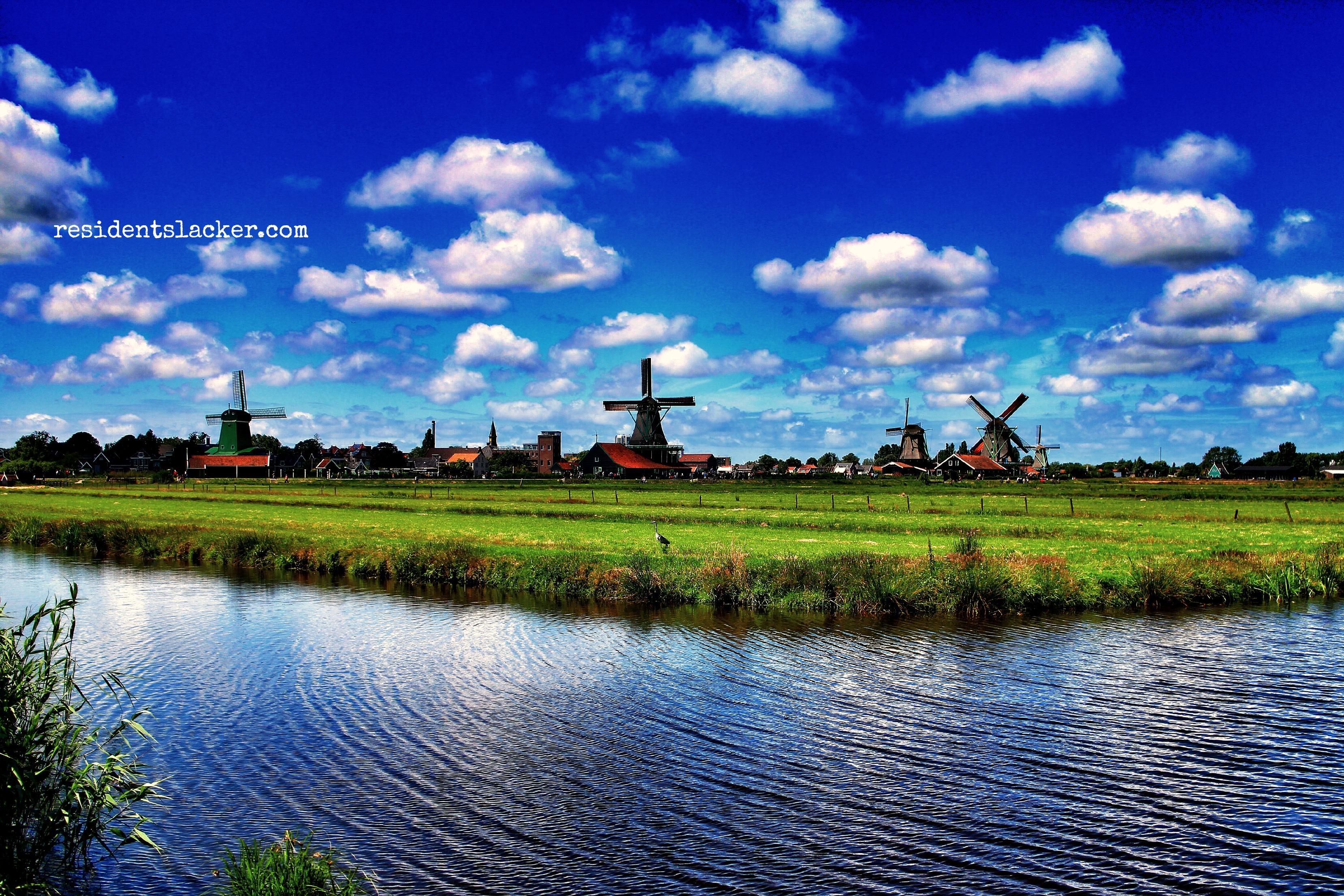 Windmills_04