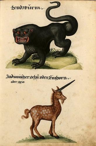004-Aquarelle von Säugetieren…- e-manuscripta-Bibliothèque électronique suisse