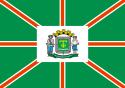 Bandeira da cidade de Goiânia - GO