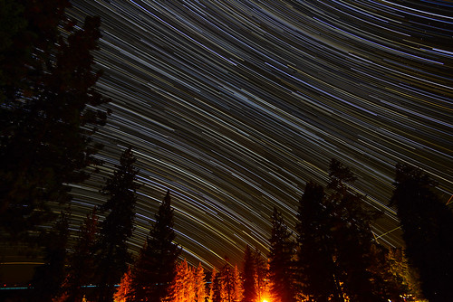 ca usa pinetrees startrails kingsbeach northlaketahoe