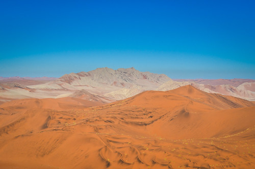 On the top of the highest sand dunes of the Namib desert, Namibia