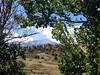Pikes Peak through the trees while hiking above Rock Ledge Ranch