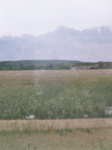 Wiesengeister - Meadow ghosts