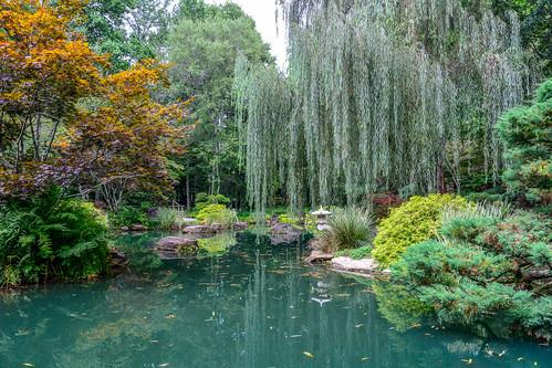 gardens georgia japanese unitedstates japanesegardens gibbs ballground gibbsgardens