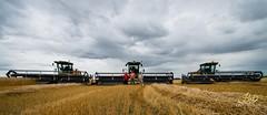 #farm #harvest14