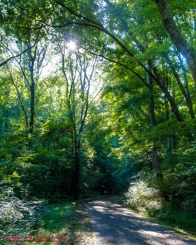 usa geotagged unitedstates nashville hiking tennessee edwinwarnerpark warnerparks canon7d nashvillehikingmeetup vaughnsgap steeplechasefarms sigma18250mmf3563dcmacrooshsm geo:lat=3605450575 geo:lon=8690895550