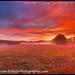 Pond Street Barn Sunrise20140929-12-Edit by Bryan Bzdula Photography