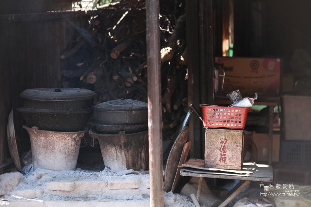 台灣獼猴 (10)