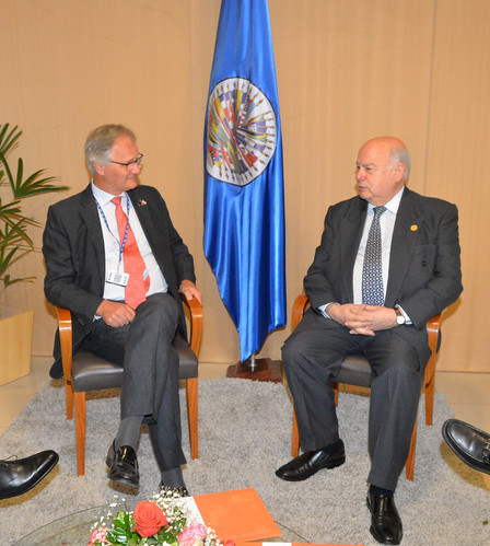 OAS Secretary General Received Visit from EU Representative for the Americas