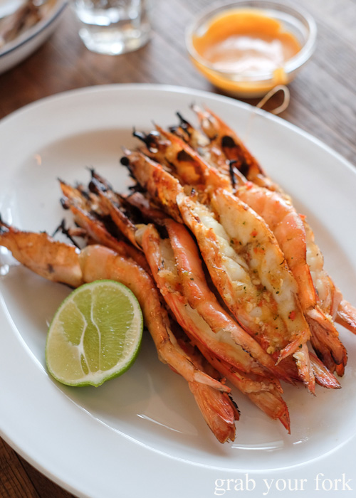 Jumbo king prawns with lemongrass and coconut dressing at Papi Chulo Manly