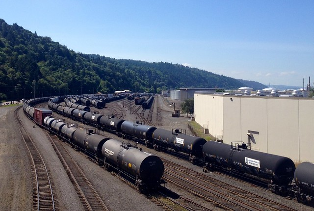 Tank cars, many of them placarded as holding crude oil and other hazardous materials, sit in a BNSF yard in Northwest Portland. Credit: Tony Schick
