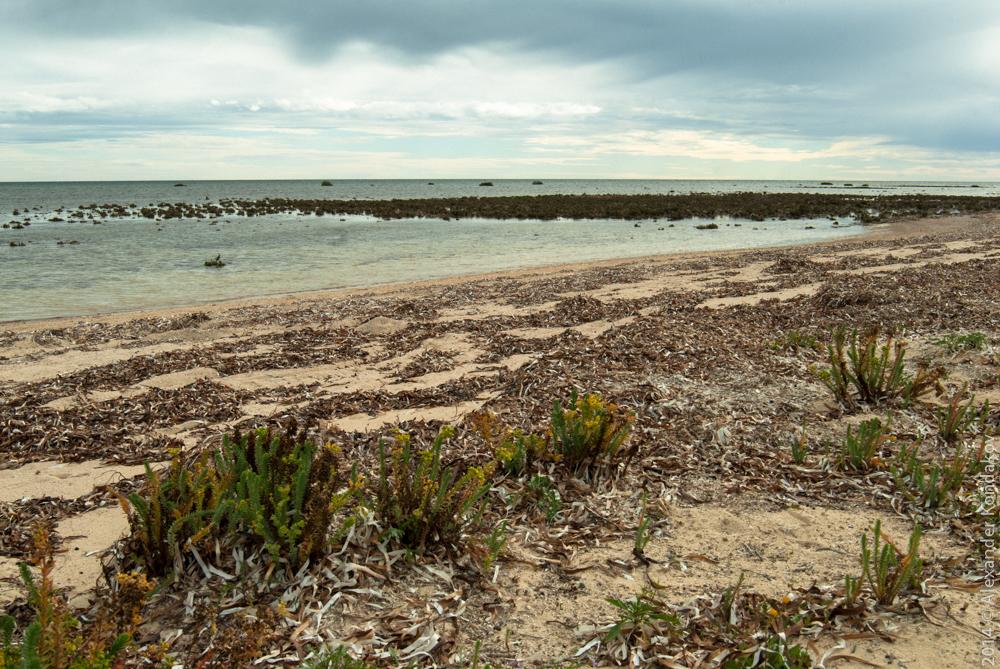 Wallaroo South Australia-12