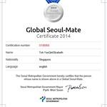 2014 Global Seoul Mate