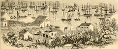 """Image from page 224 of """"Notes of a voyage to California via Cape Horn, together with scenes in El Dorado, in the years of 1849-'50. With an appendix containing reminiscences ... together with the articles of association and roll of members of """"The associa"""
