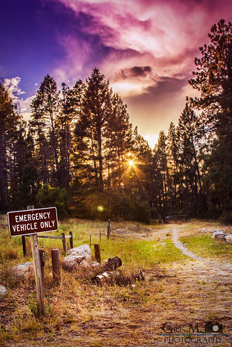 camping sunset newmexico forest canon 4thofjuly independenceday cloudcroft lincolnnationalforest 550d grismphotography