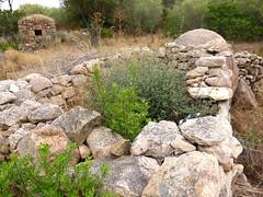 2ème maison de Ghjuncaghjola : four à pain et vestiges d'enclos à proximité