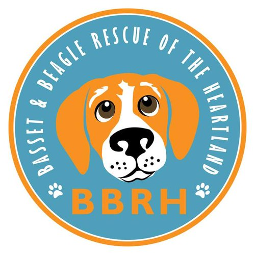 Joel Schlessinger supports Basset & Beagle Rescue of the Heartland